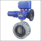 Introduced Series BELLWF Flange Center Line Electric Butterfly Valve