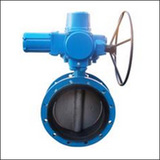 Ordinary Type BQWF Flange Center Line Electric Butterfly Valve