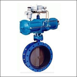 BAWWF Modulating Flange Center Line Pneumatic Butterfly Valve